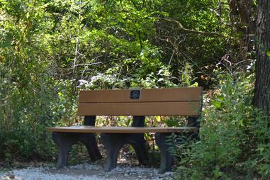Superb Dedicate A Tree Or Bench Short Links Chair Design For Home Short Linksinfo