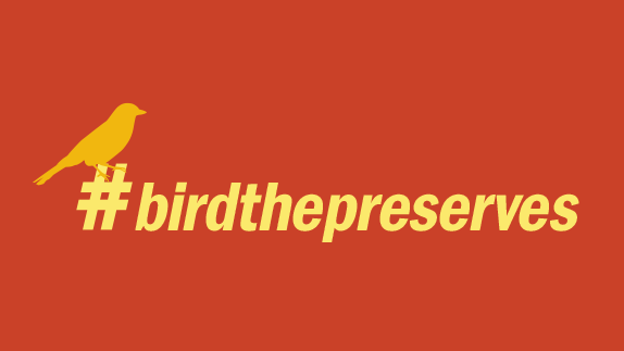 Bird the Preserves