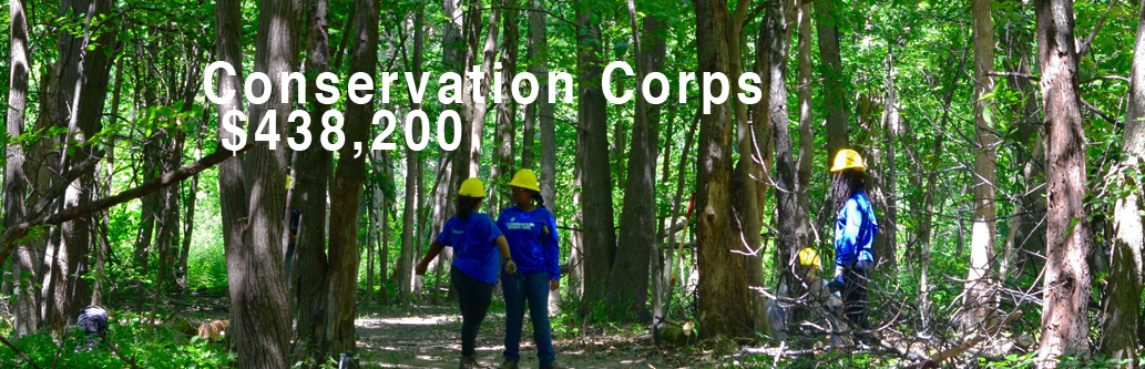 Impact-ConservationCorps