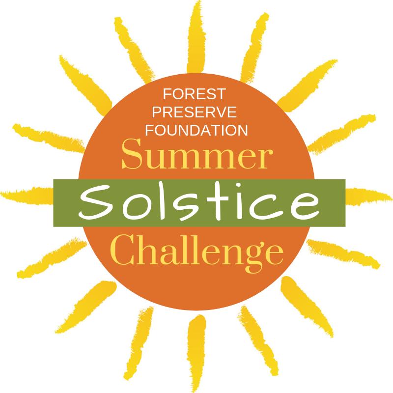 solstice challenge logo